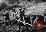 Image of German soldiers Italy, 1942, second 5 stock footage video 65675049513