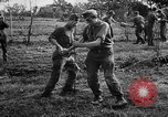 Image of German soldiers Italy, 1942, second 7 stock footage video 65675049513