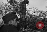 Image of German soldiers Russia, 1943, second 11 stock footage video 65675049514