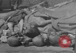 Image of concentration camp Buchenwald Germany, 1945, second 3 stock footage video 65675049542