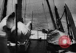 Image of seal patrol Pacific Ocean, 1935, second 11 stock footage video 65675049565