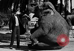 Image of Tall man and midgets Los Angeles California USA, 1930, second 11 stock footage video 65675049604