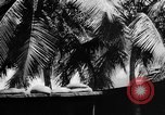 Image of Civil defense measures following  Pearl Harbor attack Oahu Hawaii USA, 1942, second 2 stock footage video 65675049608