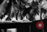 Image of Civil defense measures following  Pearl Harbor attack Oahu Hawaii USA, 1942, second 3 stock footage video 65675049608