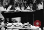 Image of Civil defense measures following  Pearl Harbor attack Oahu Hawaii USA, 1942, second 5 stock footage video 65675049608