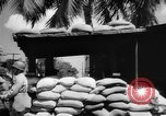 Image of Civil defense measures following  Pearl Harbor attack Oahu Hawaii USA, 1942, second 6 stock footage video 65675049608