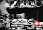 Image of Civil defense measures following  Pearl Harbor attack Oahu Hawaii USA, 1942, second 7 stock footage video 65675049608