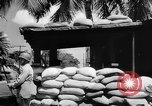 Image of Civil defense measures following  Pearl Harbor attack Oahu Hawaii USA, 1942, second 8 stock footage video 65675049608