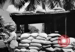 Image of Civil defense measures following  Pearl Harbor attack Oahu Hawaii USA, 1942, second 9 stock footage video 65675049608