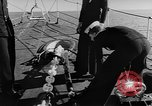Image of Royal Navy fleet Atlantic Ocean, 1950, second 9 stock footage video 65675049648