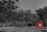 Image of Spanish Civil War Amposta Spain, 1938, second 7 stock footage video 65675049679