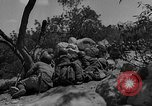 Image of Spanish Civil War Amposta Spain, 1938, second 8 stock footage video 65675049679
