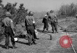 Image of German shoebox mines discovered using metal detectors France, 1944, second 3 stock footage video 65675049866