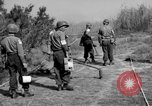 Image of German shoebox mines discovered using metal detectors France, 1944, second 4 stock footage video 65675049866