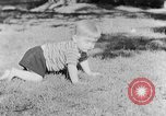 Image of small boy Kentucky United States USA, 1940, second 10 stock footage video 65675050014