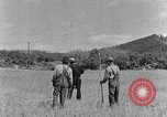 Image of scythe and cradle Kentucky United States USA, 1940, second 9 stock footage video 65675050015