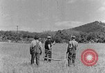 Image of scythe and cradle Kentucky United States USA, 1940, second 10 stock footage video 65675050015