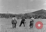 Image of scythe and cradle Kentucky United States USA, 1940, second 11 stock footage video 65675050015