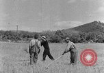 Image of scythe and cradle Kentucky United States USA, 1940, second 12 stock footage video 65675050015