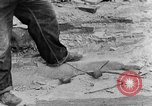 Image of breaking rocks Tennessee United States USA, 1940, second 8 stock footage video 65675050018