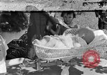 Image of infant Tennessee United States USA, 1940, second 1 stock footage video 65675050020