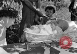 Image of infant Tennessee United States USA, 1940, second 5 stock footage video 65675050020