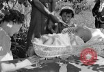 Image of infant Tennessee United States USA, 1940, second 7 stock footage video 65675050020