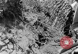 Image of pile of brush Tennessee United States USA, 1940, second 6 stock footage video 65675050022