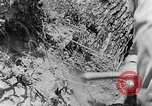 Image of pile of brush Tennessee United States USA, 1940, second 8 stock footage video 65675050022