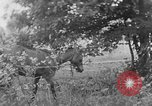 Image of farm boys Kentucky United States USA, 1940, second 2 stock footage video 65675050029