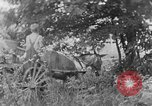 Image of farm boys Kentucky United States USA, 1940, second 3 stock footage video 65675050029