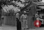Image of timber store Kentucky United States USA, 1940, second 8 stock footage video 65675050031