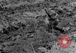 Image of plowing field Calhoun Alabama USA, 1940, second 12 stock footage video 65675050035
