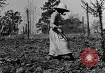 Image of mule drawn plow Calhoun Alabama USA, 1940, second 3 stock footage video 65675050043