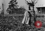 Image of mule drawn plow Calhoun Alabama USA, 1940, second 4 stock footage video 65675050043