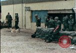 Image of American marines Beirut Lebanon, 1983, second 3 stock footage video 65675050104