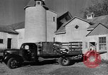 Image of York Orchards Cummington Massachusetts USA, 1945, second 2 stock footage video 65675050129