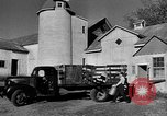 Image of York Orchards Cummington Massachusetts USA, 1945, second 5 stock footage video 65675050129