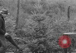 Image of fir trees Washington State United States USA, 1938, second 4 stock footage video 65675050145