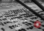 Image of United States Marine Corps California United States USA, 1949, second 3 stock footage video 65675050159