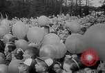 Image of Princess Juliana Holland Netherlands, 1949, second 8 stock footage video 65675050160
