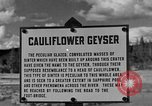 Image of Cauliflower Geyser Wyoming United States USA, 1936, second 1 stock footage video 65675050283