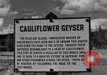 Image of Cauliflower Geyser Wyoming United States USA, 1936, second 2 stock footage video 65675050283