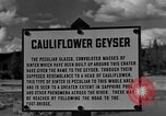 Image of Cauliflower Geyser Wyoming United States USA, 1936, second 3 stock footage video 65675050283