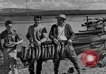 Image of tourists and wildlife Wyoming United States USA, 1936, second 9 stock footage video 65675050294