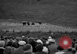 Image of Grizzly bears Wyoming United States USA, 1936, second 7 stock footage video 65675050299