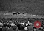 Image of Grizzly bears Wyoming United States USA, 1936, second 9 stock footage video 65675050299