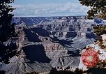 Image of Grand Canyons Arizona United States USA, 1942, second 11 stock footage video 65675050323