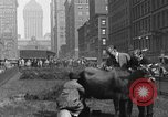 Image of milking a cow New York United States USA, 1929, second 5 stock footage video 65675050358
