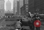Image of milking a cow New York United States USA, 1929, second 6 stock footage video 65675050358